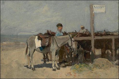 Ezelstandplaats op het strand in Scheveningen